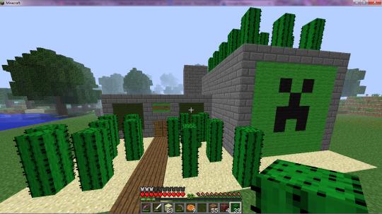Cactus- Store
