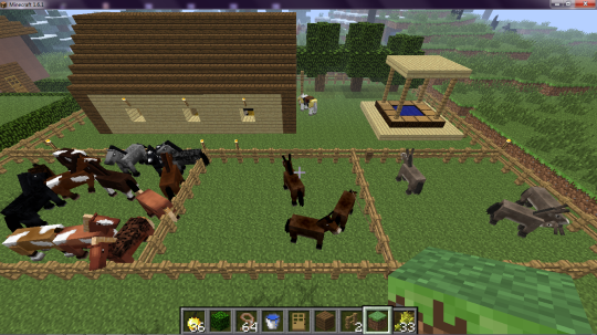 Fazenda (Cavalos Burros e Mulas)